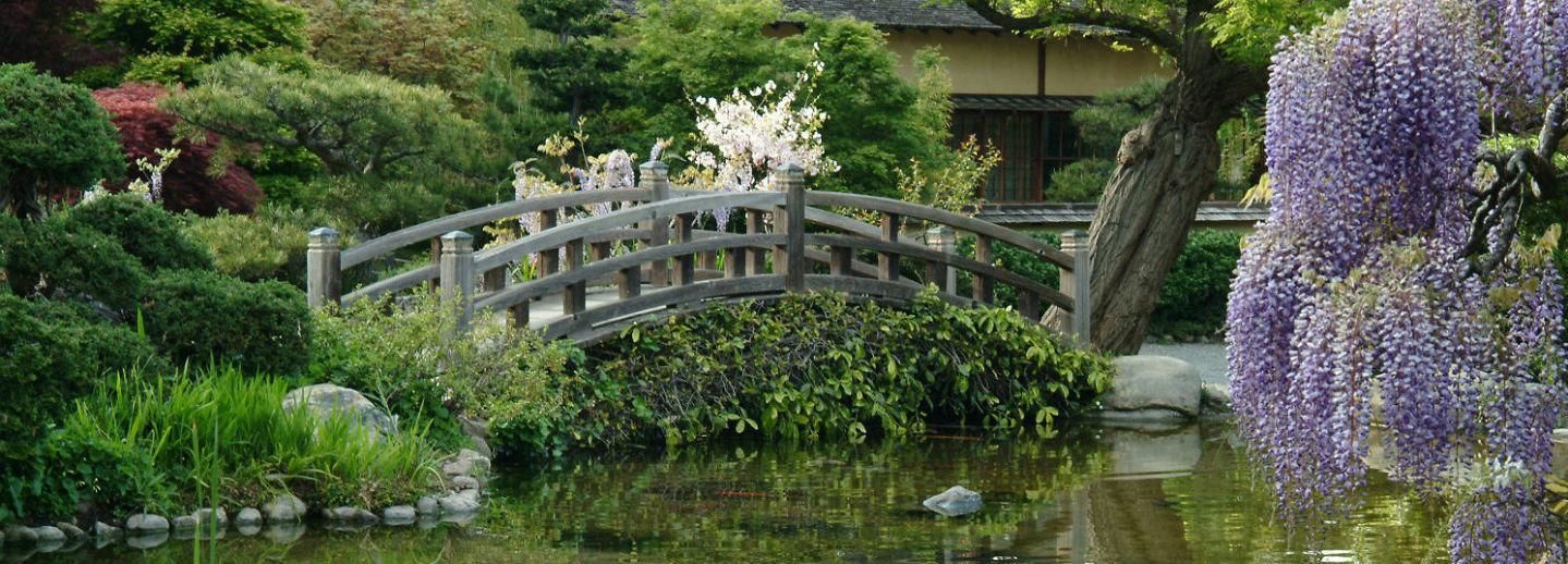 Picture Of Garden Landscape California garden landscape history society home chico workwithnaturefo